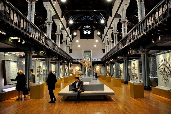 The Worlds Top Anatomical Museums